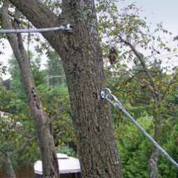 tree+cabling+wire+3